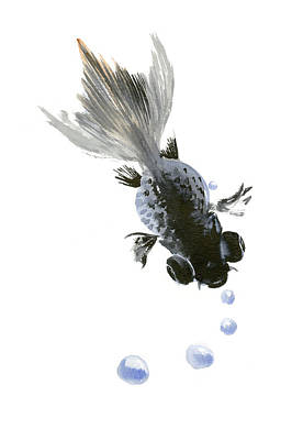 Koi Drawing - Black Fish by Suren Nersisyan