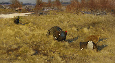 Grouse Painting - Black Grouse Displaying by Bruno Liljefors