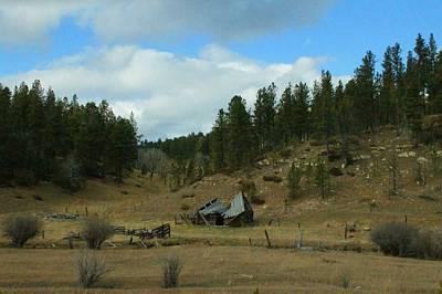 Black Hills Broken Down Cabin Print by Christopher Kirby