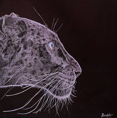 Panther Drawing - Black Is Black by Albane Devalet