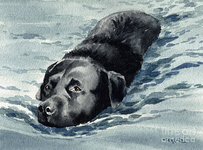 Black Lab Watercolor Painting - Black Lab Swimming by David Rogers