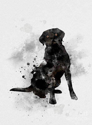 Adorable Mixed Media - Black Labrador by Rebecca Jenkins
