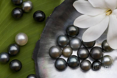 Tiare Photograph - Black Pearls And Tiare Flower by Jean-Louis Klein & Marie-Luce Hubert