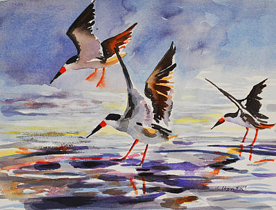 Painting - Black Skimmers 2-18-16 by Julianne Felton