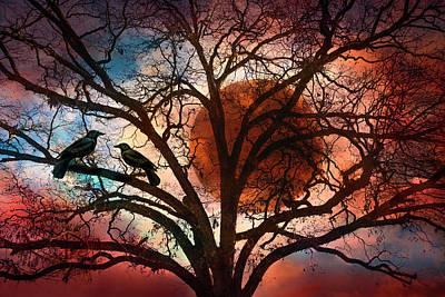 Blackbird Photograph - Blackbirds At Dusk by Debra and Dave Vanderlaan