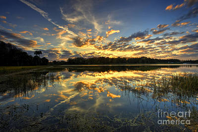 Photograph - Blazing Sunrise by Rick Mann