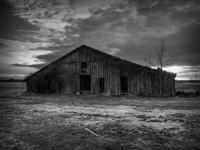 Blighted Barn 003 Bw Print by Lance Vaughn