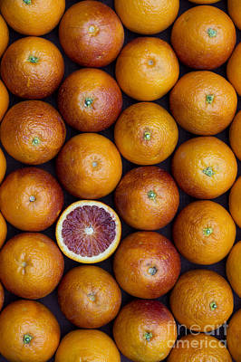 Vegetable Gardens Photograph - Blood Orange Fruits by Tim Gainey
