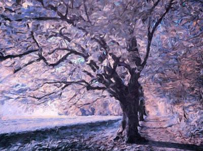 Blossoms In Winter Print by Georgiana Romanovna