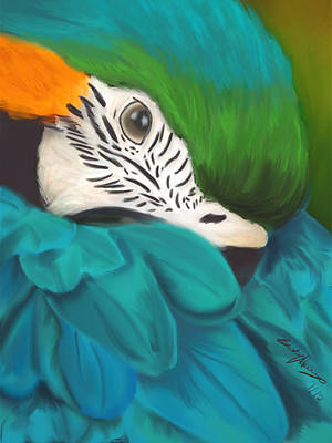 Blue And Gold Macaw Painting - Blue And Gold Macaw by Becky Herrera