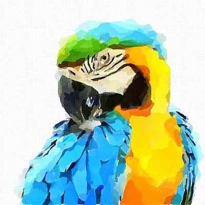 Blue And Gold Macaw Painting - Blue And Yellow Macaw by Chris Butler