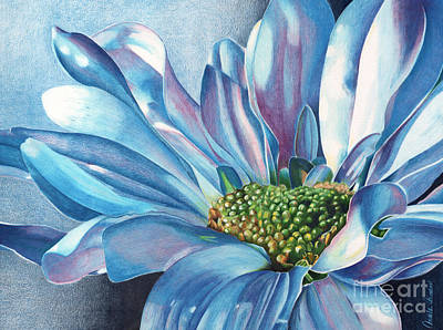 Colored Pencil Painting - Blue by Angela Armano