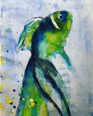 Blue Betta Fish Print by Jennifer Whitworth