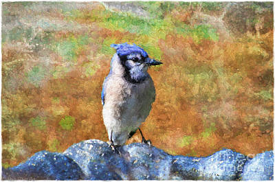 Blue Bird - Digital Paint Print by Debbie Portwood