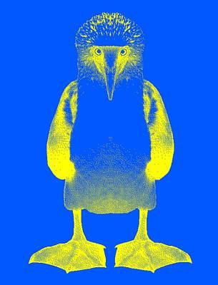 Boobies Digital Art - Blue Booby by Daniel House