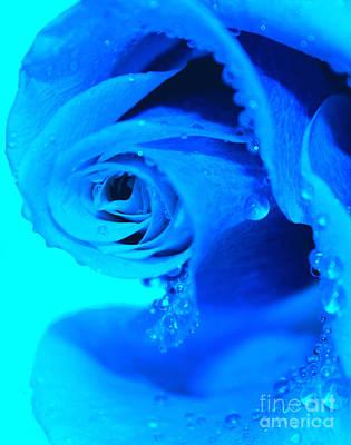 Blue Flowers Photograph - Blue Diamonds by Krissy Katsimbras