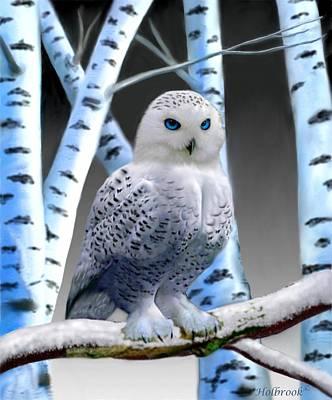 Blue-eyed Snow Owl Print by Glenn Holbrook