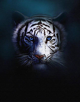 Siberian Digital Art - Old Blue Eyes by Robert Foster