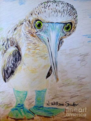 Blue Feet Print by N Willson-Strader
