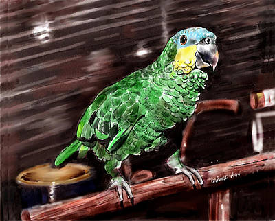 Parrot Digital Art - Blue-fronted Amazon Parrot by Arline Wagner