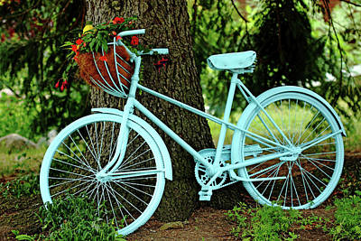 Blue Begonia Photograph - Blue Garden Bicycle by Debbie Oppermann