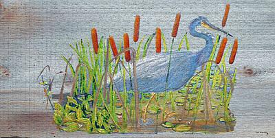 Blue Heron In Everglades Print by Ken Figurski