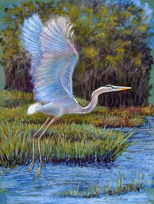 Marshes Pastel - Blue Heron In Flight by Susan Jenkins
