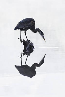 Blue Heron In High Key Print by Mark Kiver