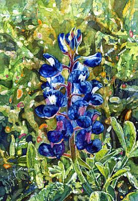 Texas Hill Country Painting - Blue In Bloom by Hailey E Herrera