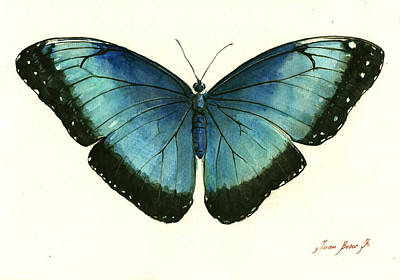 Blue Morpho Butterfly Print by Juan Bosco