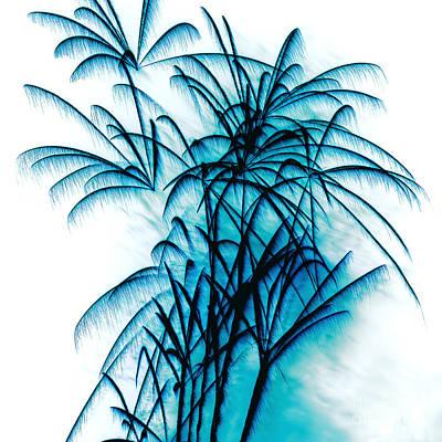 Blue Fireworks Photograph - Blue Palm Fireworks By Kaye Menner by Kaye Menner