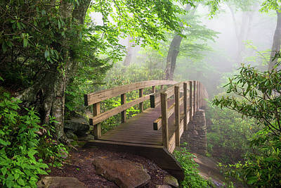 Blue Ridge Parkway Hiking Tanawha Trail Rough Ridge Print by Dave Allen