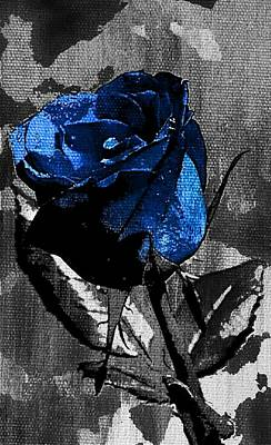 Paint Photograph - Blue Rose by Ca Photography