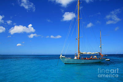 Best Sailing Photograph - Blue Sailing by Perry Webster