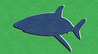 Blue Shark Print by Linda Woods
