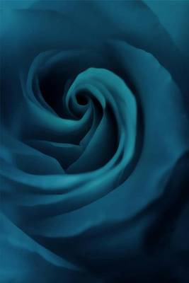 Roses Photograph - Blue Silk by The Art Of Marilyn Ridoutt-Greene