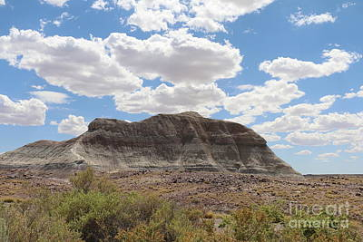 Multihued Photograph - Blue Sky White Clouds Over The Painted Desert by Christiane Schulze Art And Photography