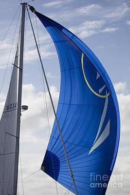 Sailing Yacht Photograph - Blue Spinnaker Sy Alexandria by Dustin K Ryan