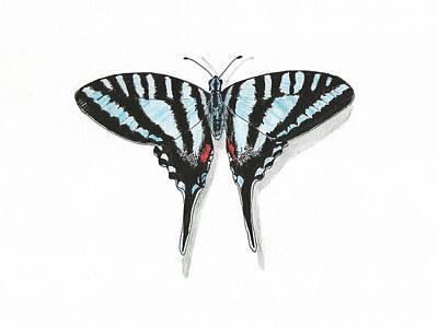 Blue Swallowtail Drawing - Blue Swallowtail Butterfly by Masha Batkova