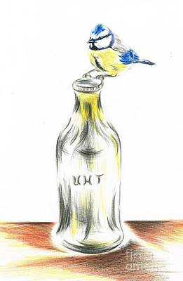 Glass Bottle Drawing - Blue Tit Loves The Cream by Teresa White