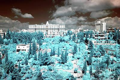 Blue Trees In Jerusalem Print by John Rizzuto