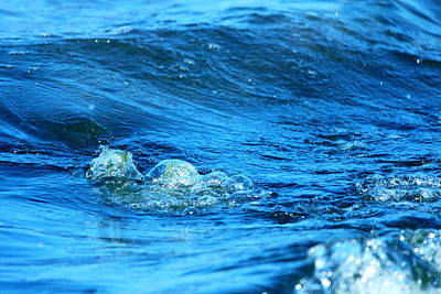 Tangy Photograph - Blue Water by Heike Hultsch