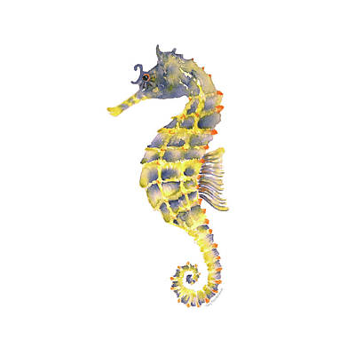 Blue Yellow Seahorse - Square Print by Amy Kirkpatrick