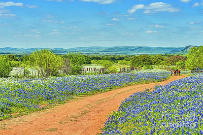 Bluebonnets And Cowboys Print by Tod and Cynthia Grubbs