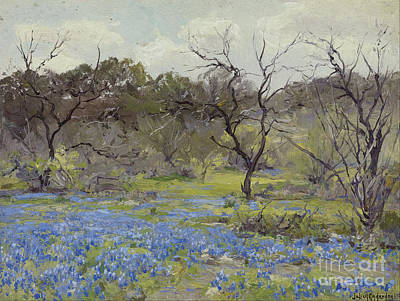 Early Spring Painting - Bluebonnets And Mesquite by Julian Onderdonk