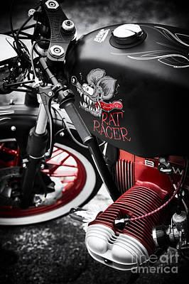 Bmw Rat Racer Print by Tim Gainey