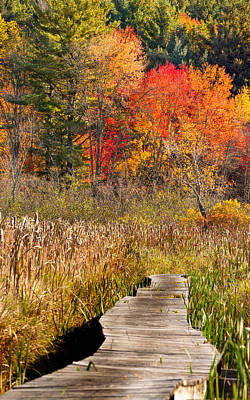 Fall Photograph - Boardwalk In Autumn  by Brian Caldwell