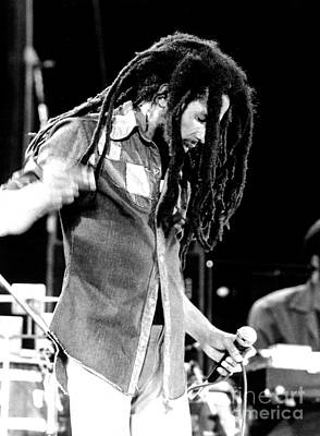 Music Photograph - Bob Marley 1979 Dreads by Chris Walter