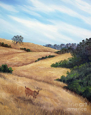 Bobcat At Rancho San Antonio Print by Laura Iverson