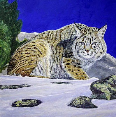 Meadowlark Painting - Bobcat by Manuel Lopez